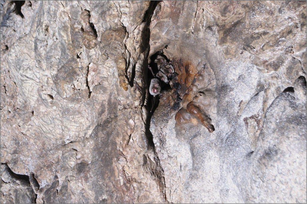 Пећина Бијело Бучје (13)-min