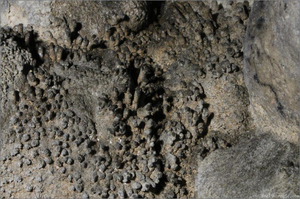 Пећина Бијело Бучје (20)-min