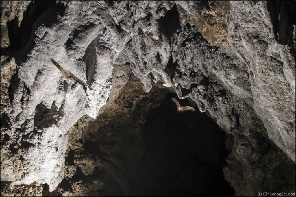 Пећина Бијело Бучје (8)-min