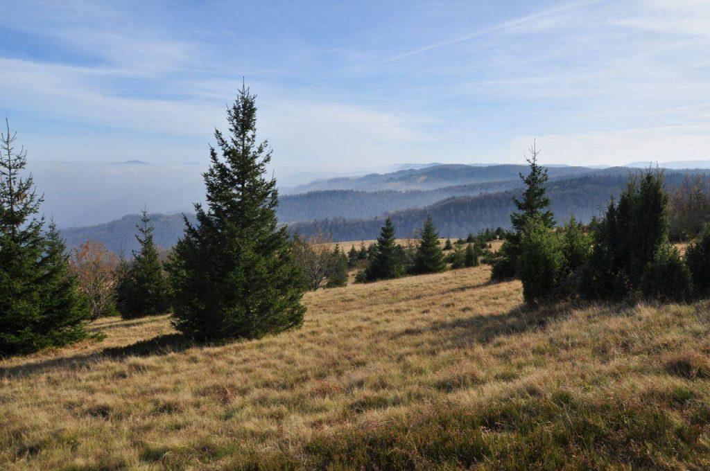 Планина Очауш (2)