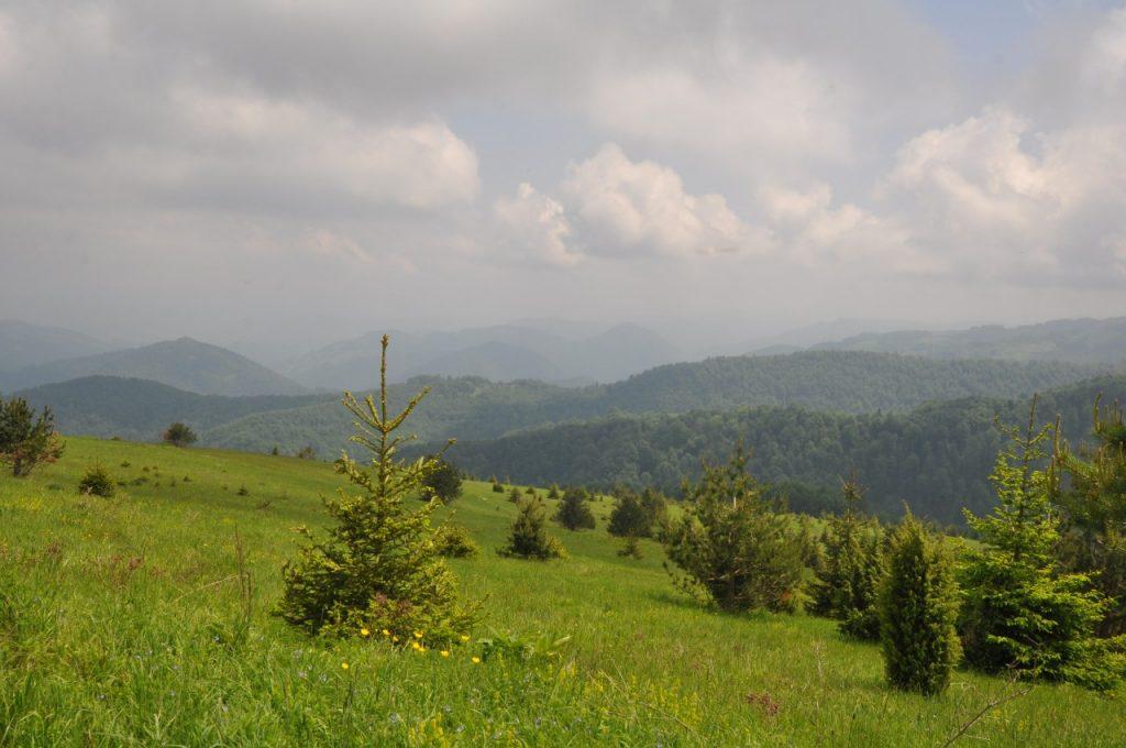 Планина Очауш (7)