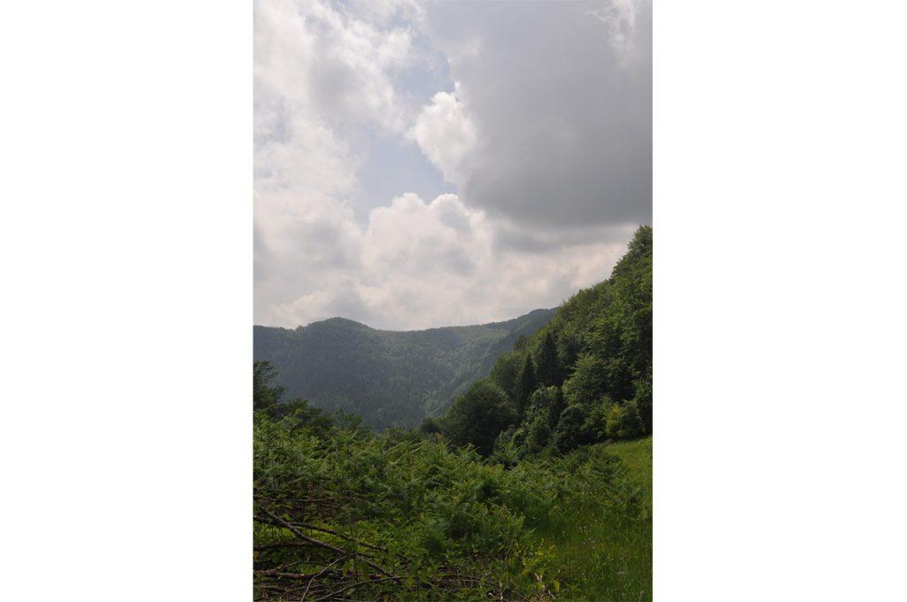 Planina Očauš 6